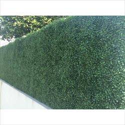 Century Home Living Fence Covering Artificial Plane Hedge Boxwood