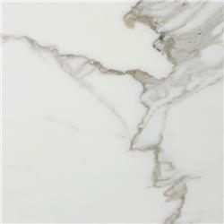 Marble Systems Marble Tile - Calacatta Collection
