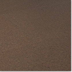 Cork Evora Wide Plank Ervas Collection Cork Flooring Model 100944241  Discount