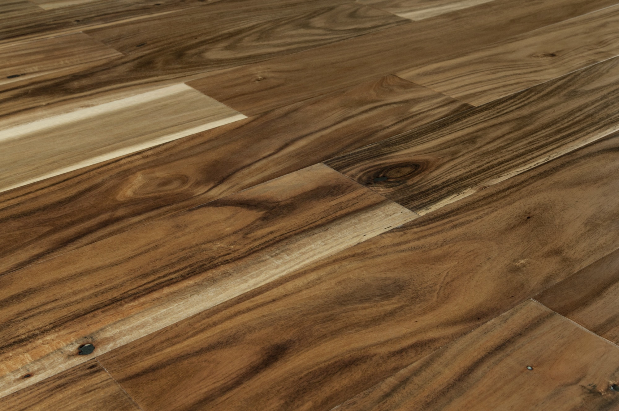 Jasper engineered hardwood nakai acacia collection for Wood flooring natural