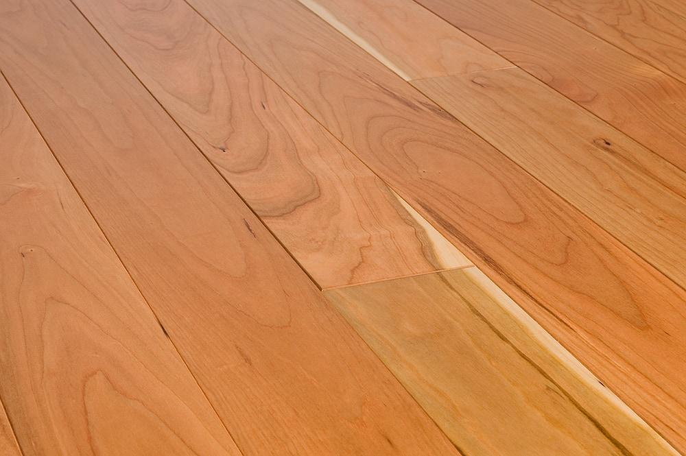 Free samples jasper hardwood american black cherry for American floor
