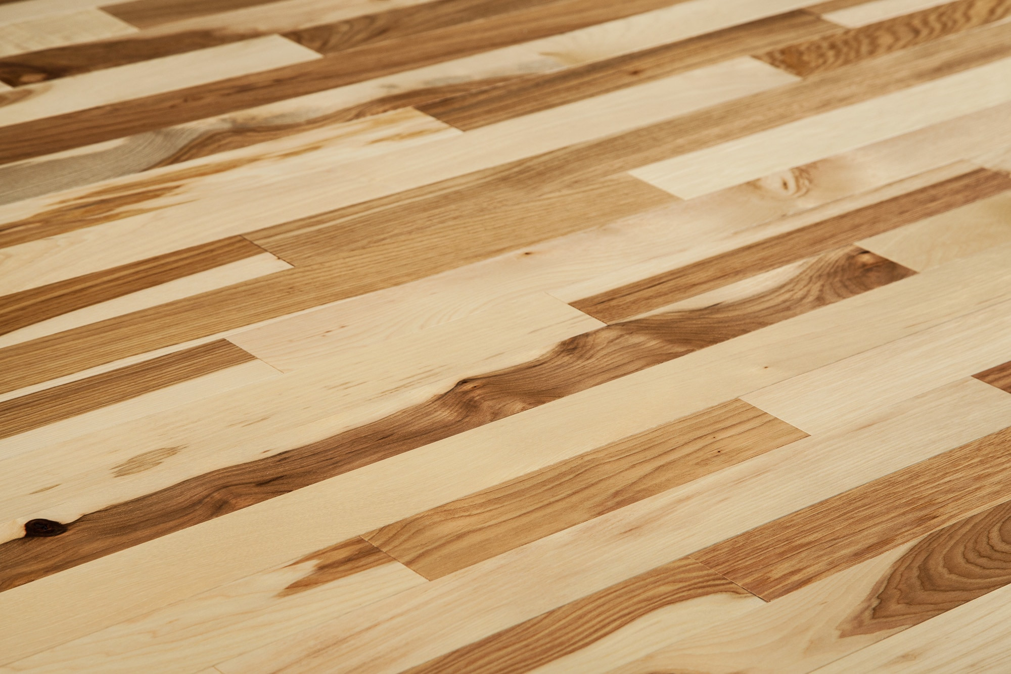 Hickory Wood Floors Modern House