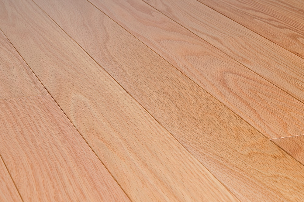 Free samples jasper hardwood northern red oak for Natural red oak floors