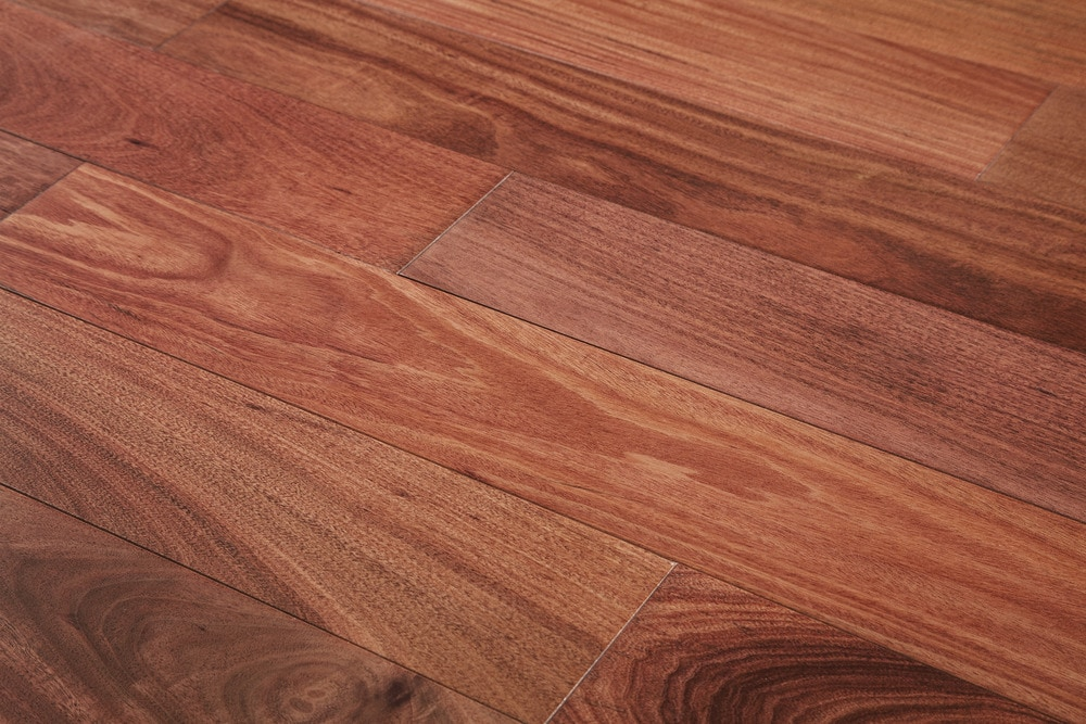 Free samples mazama hardwood andes collection natural