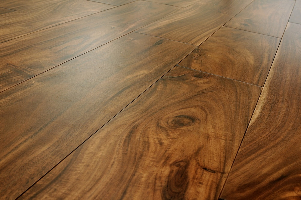 Free Samples Mazama Hardwood Tropical Collection Acacia
