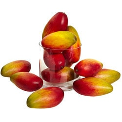 "Nearly Natural - 5.5"" Weighted Faux Mango (Set of 12)"