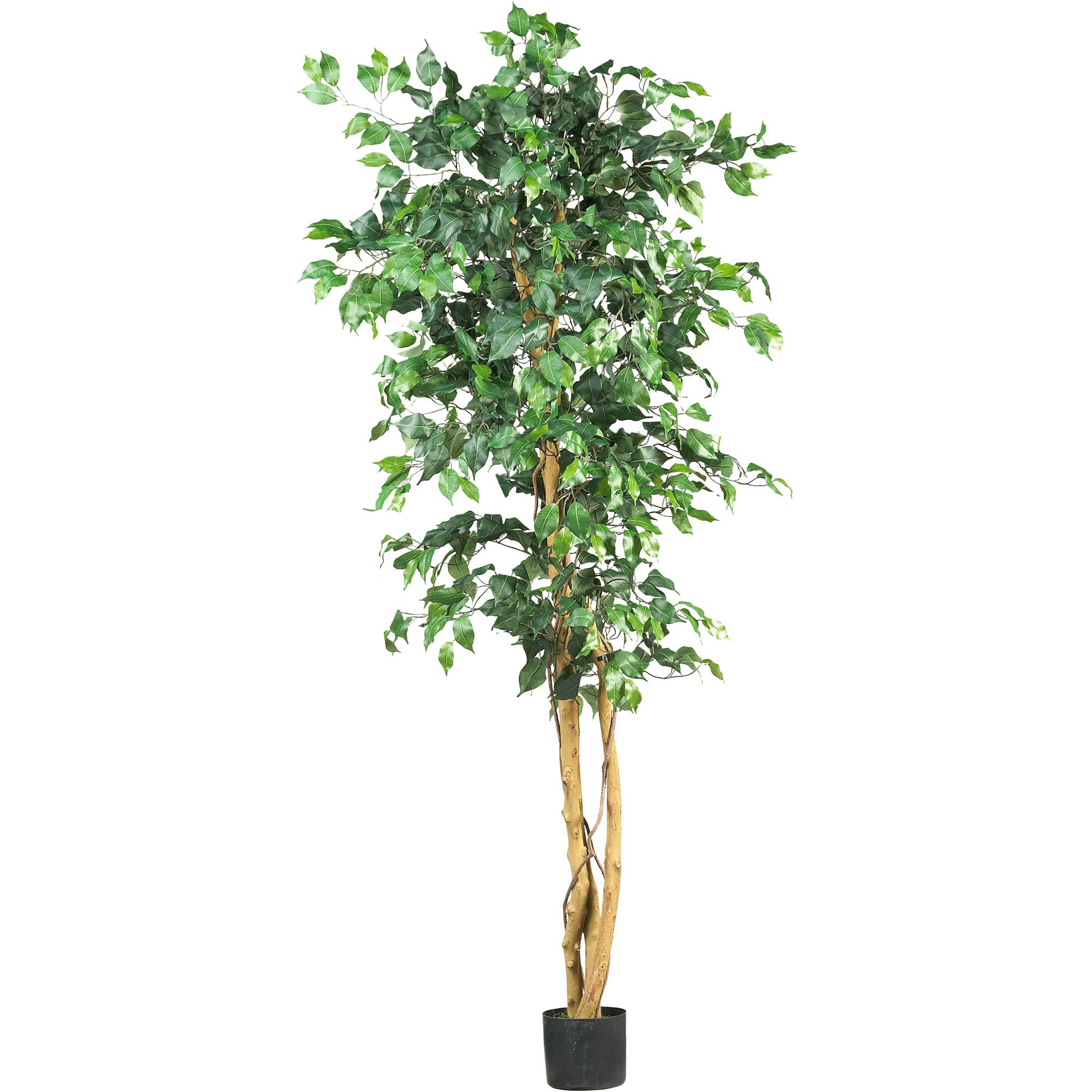 Nearly Natural - 6' Ficus Silk Tree 151817001