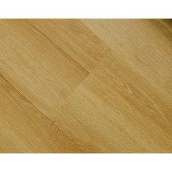Golden Elite Flooring Laminate 8mm Euro Model 151754311 Laminate Flooring