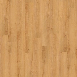 Shaw Floors Fairbanks 20 Vinyl Plank Model 150655891 Vinyl Plank Flooring