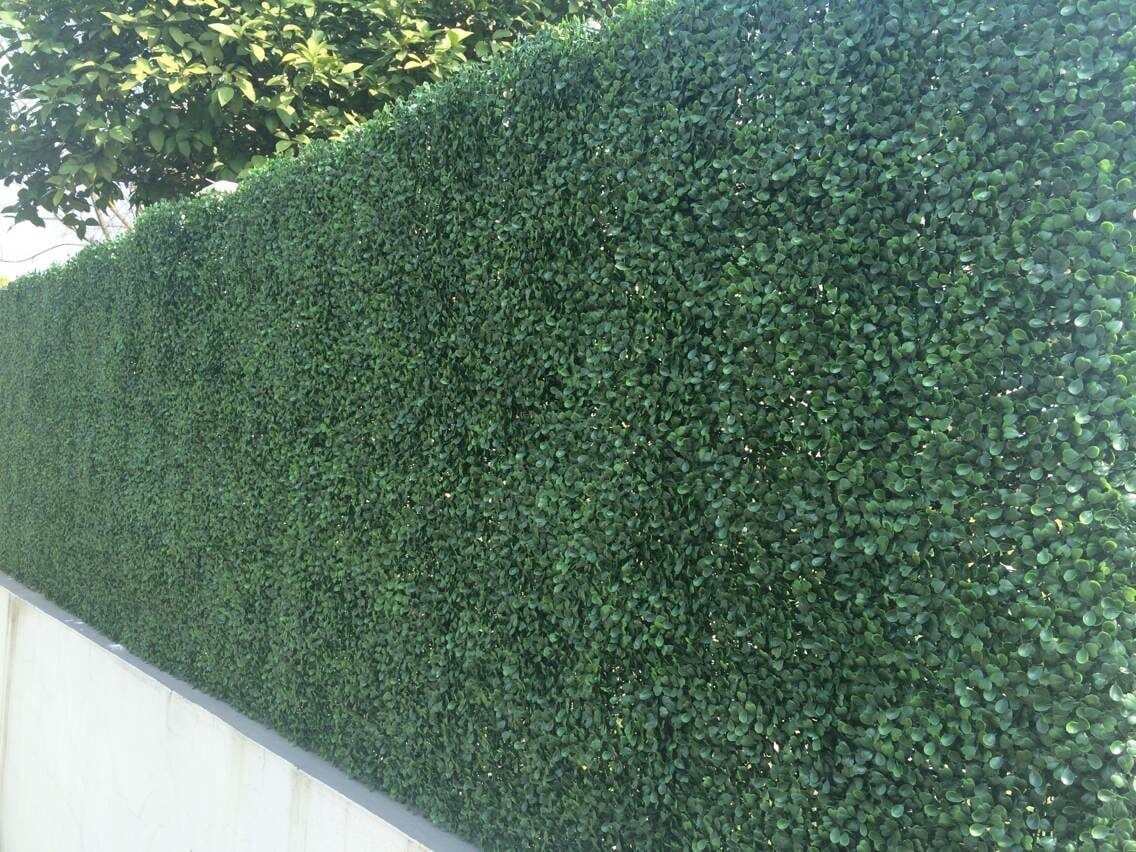 Century Home Living - Century Home Living Fence Covering Artificial Plane Hedge Boxwood 150330161