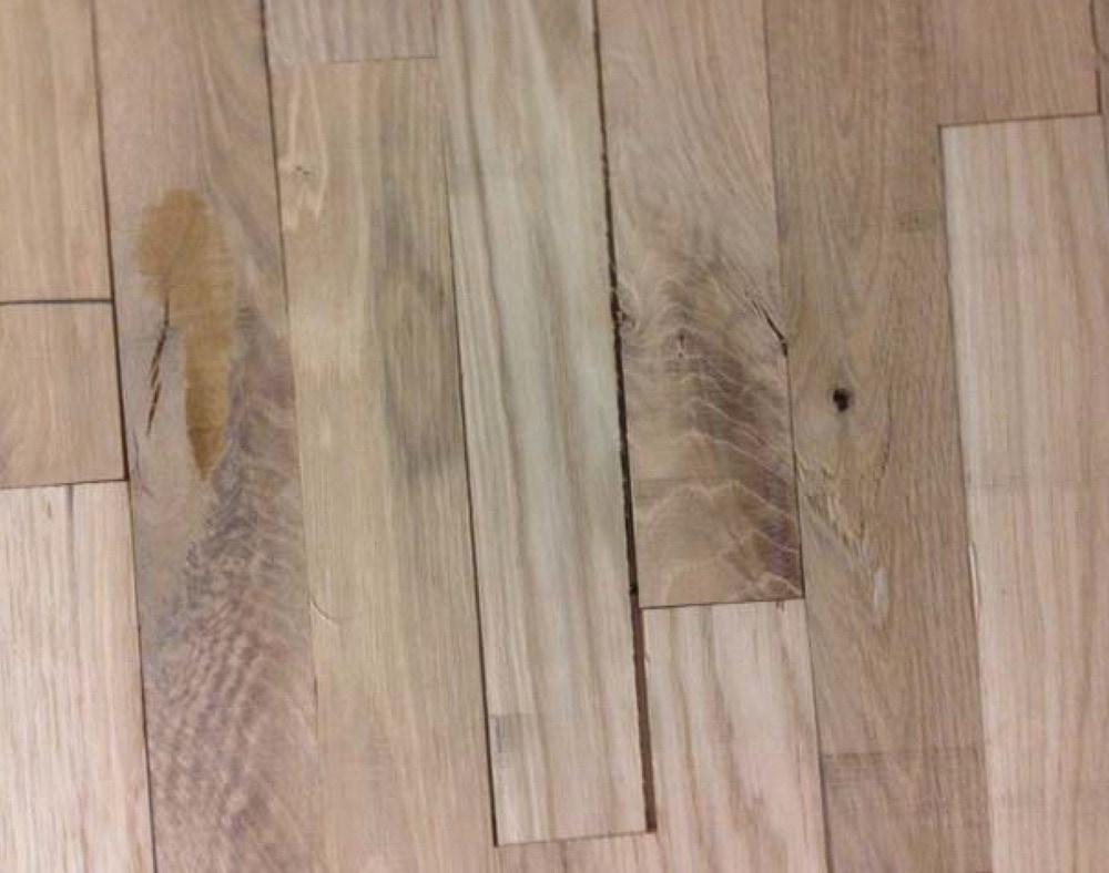 Bruceton Strip Hardwood Flooring - Unfinished Bruceton Strip ... - ^